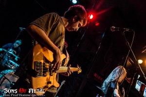 dead kiwis (9)